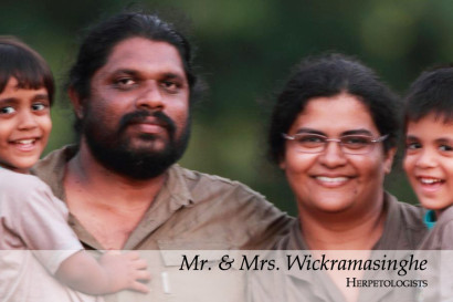Discoveries Mr. and Mrs. Wickramasinghe 20_2